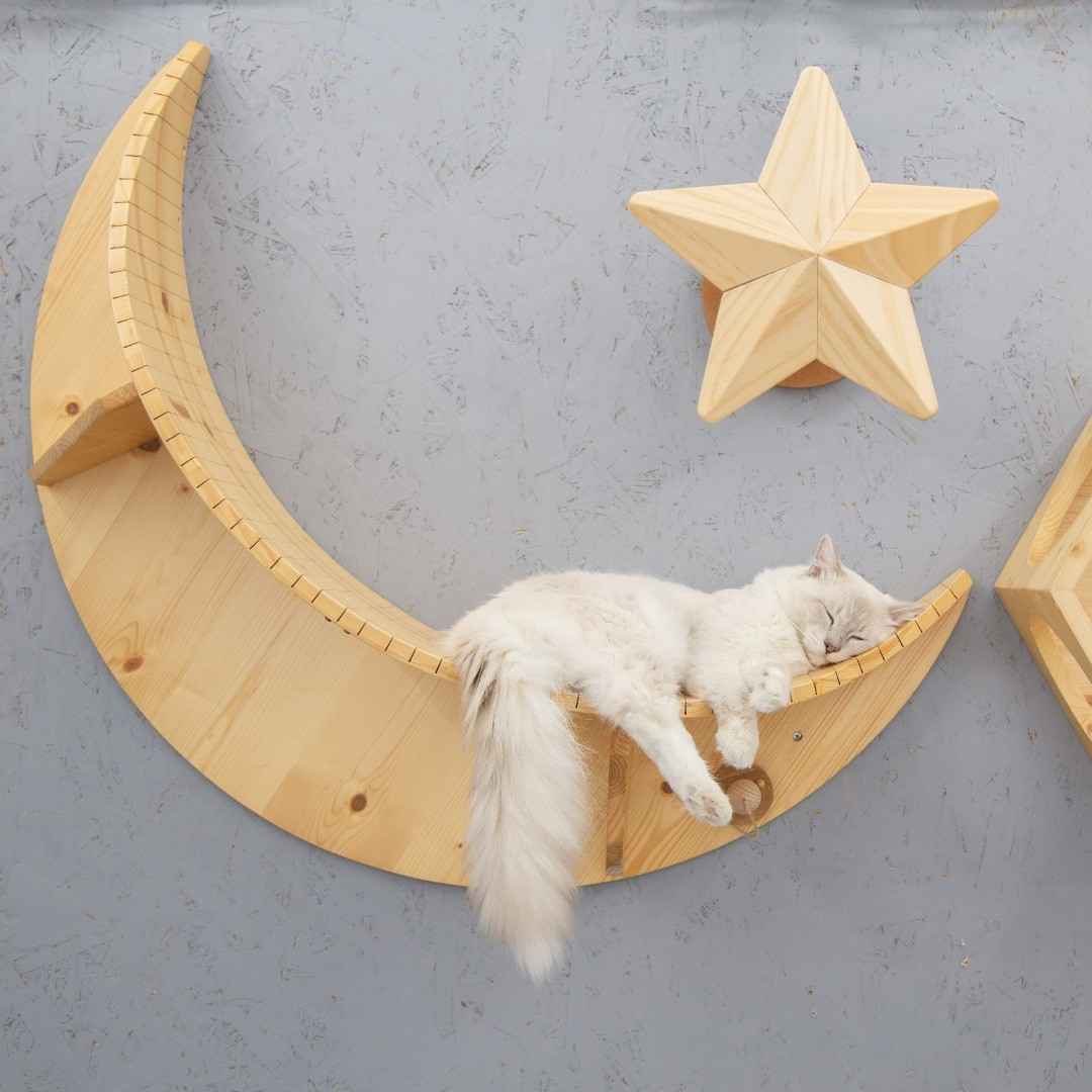 moon shaped cat wall shelf