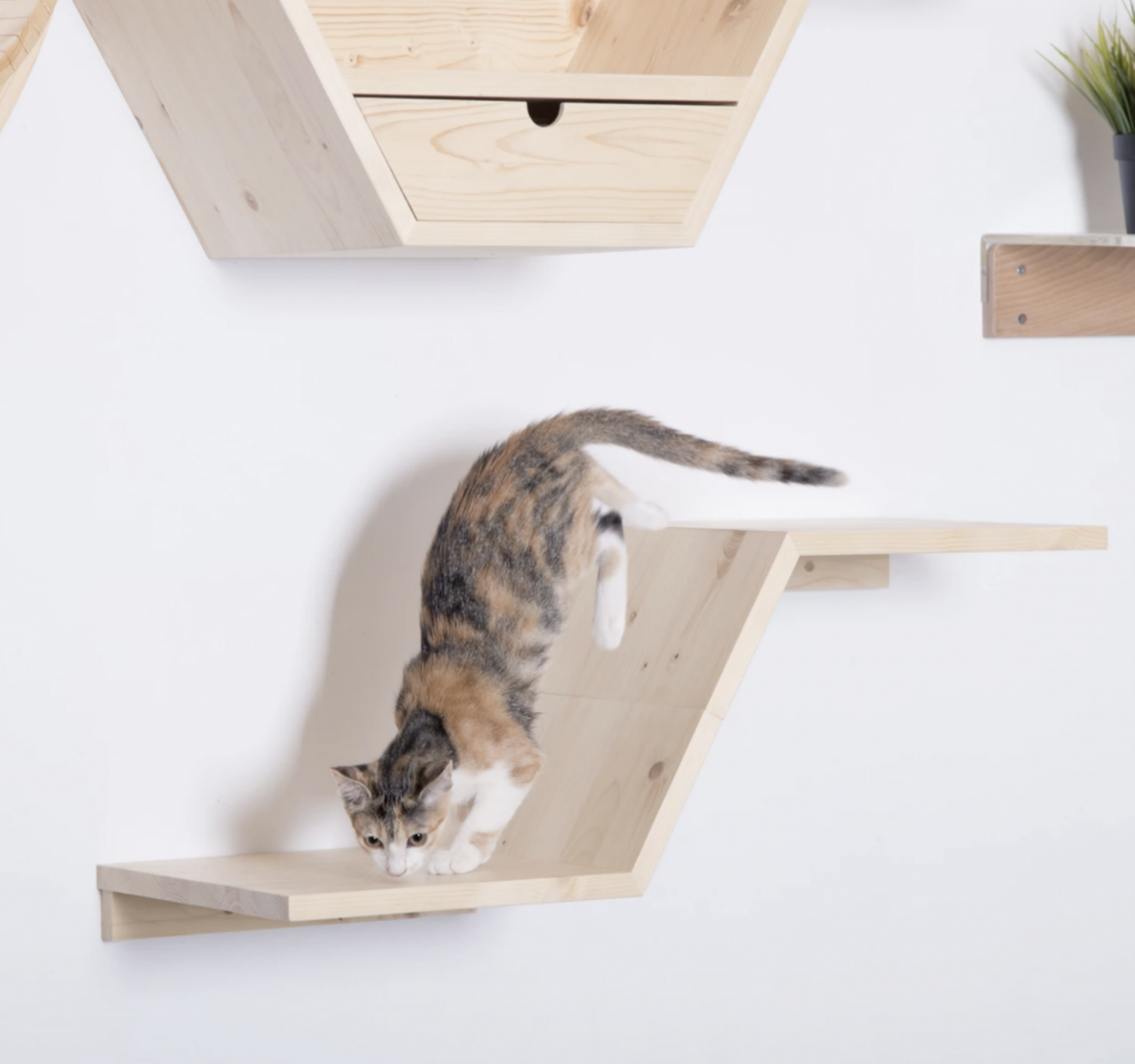 Zone Tiered Cat Wall Shelf