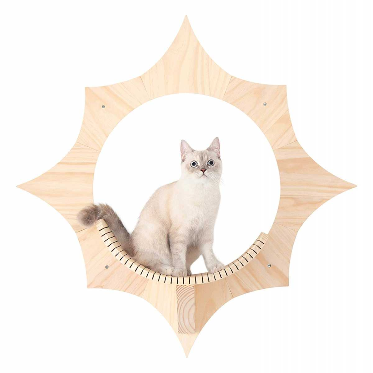 Solar Sun Shaped Cat Wall Shelf