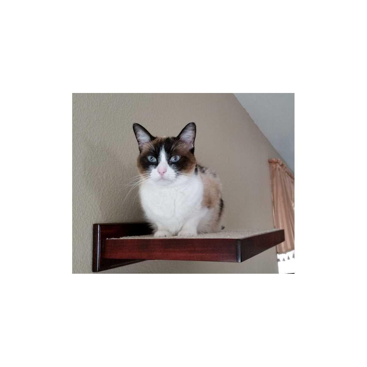 Cat Furniture Climbing Wall Shelves