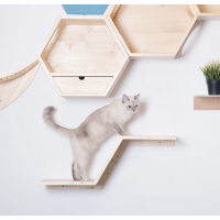 Zone Tiered Cat Wall Shelf