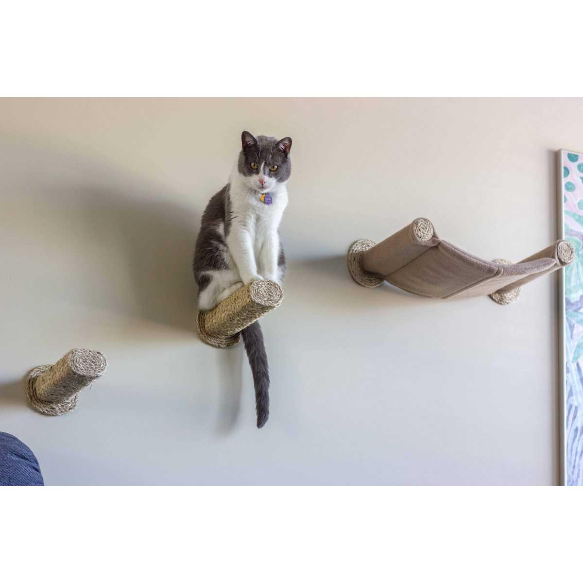 cat hammock   wall mounted cat bed   with 2 sisal steps hammock   wall mounted cat bed   with 2 sisal steps  rh   catwallshelves