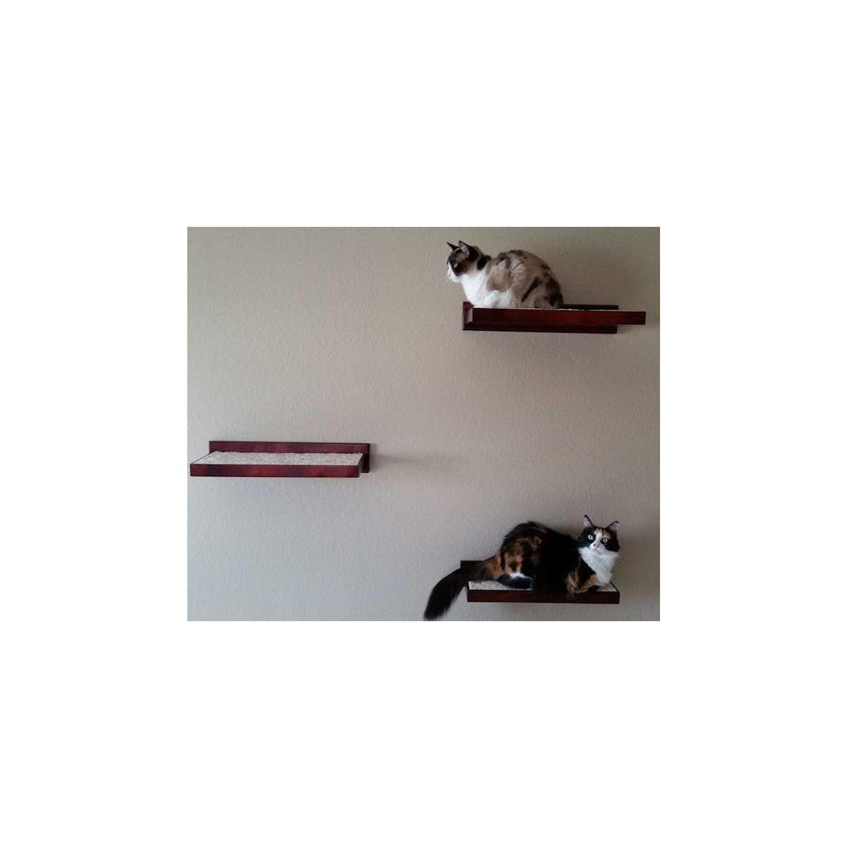 wall mounted cat furniture. Wall Mounted Cat Furniture. Furniture Climbing Shelves