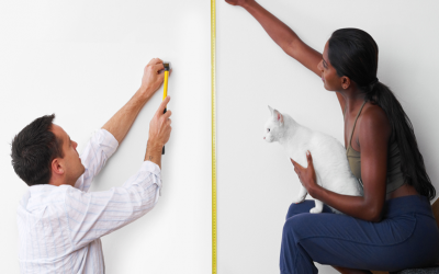 Installing Your Cat Wall System
