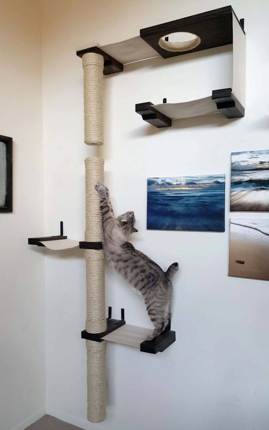 Browse These Fantastic Examples Of Our Customersu0027 Great Cat Wall Shelf  Installations! We Would Love To See Your Cat Wall Systems And Share Them  Here.
