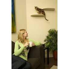 Cat Floating Cat Shelf