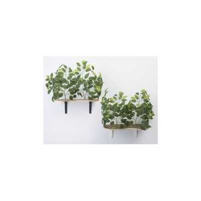 Canopy Cat Wall Shelves with Leaves - Set of (2)