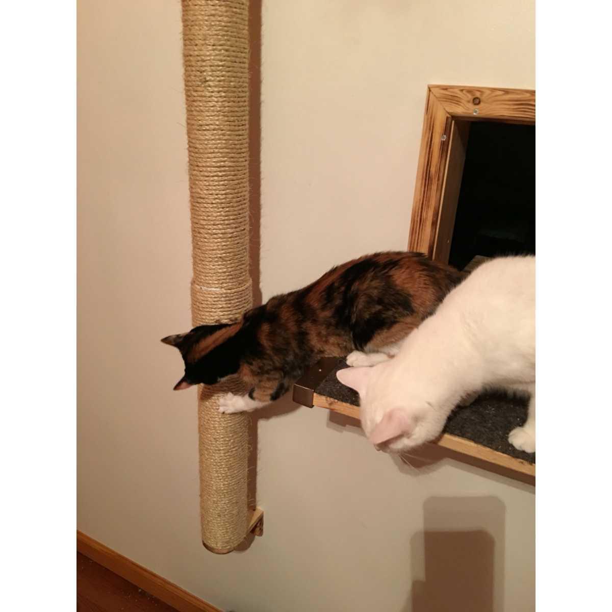 sisal wall mounted cat scratcher climber pole catwallshelves
