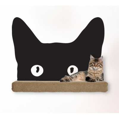 Cat Themed Wall Accent Decal - Peeking Cat Face