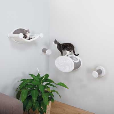Wall Mounted Cat Play Set